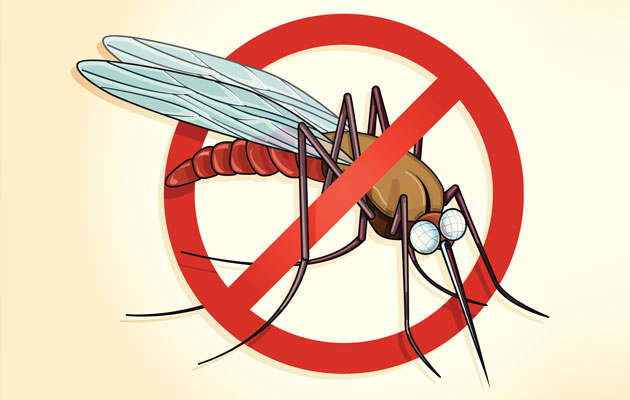 drone under with 7 Tips For Malaria Prevention on Soundwave With Laserbeak 5268 besides 2016 Honda Civic Ex Sedan Review also File Md 12 2 additionally 7 Tips For Malaria Prevention additionally Watch.